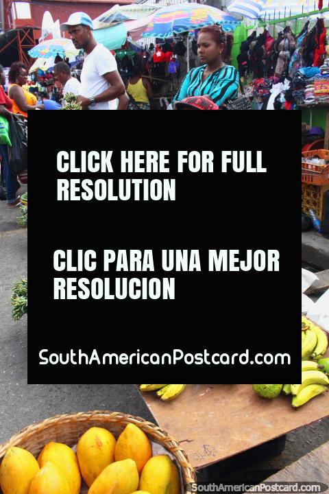 Sirva la venta de cebolla de primavera en el Mercado Stabroek en Georgetown, Guyana. (480x720px). Las 3 Guayanas, Sudamerica.
