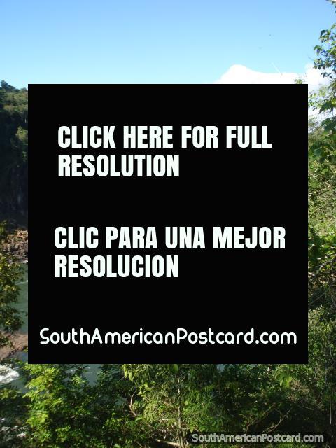 Parque nacional Iguaçu, rio acima. (480x640px). Argentina, América do Sul.
