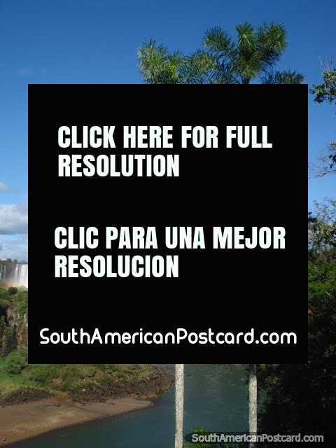 Visões brilhantes de quedas de Iguaçu. (480x640px). Argentina, América do Sul.