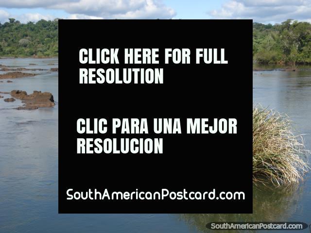 Unos 10 tranquilos y pintorescos - paseo de 20 minutos a Garganta del Diablo en Iguazu. (640x480px). Argentina, Sudamerica.