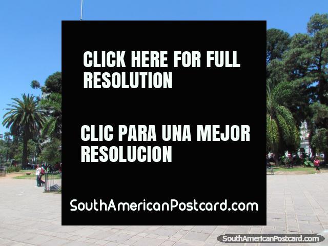 El centro de Jujuy, Plaza Belgrano y parque. (640x480px). Argentina, Sudamerica.