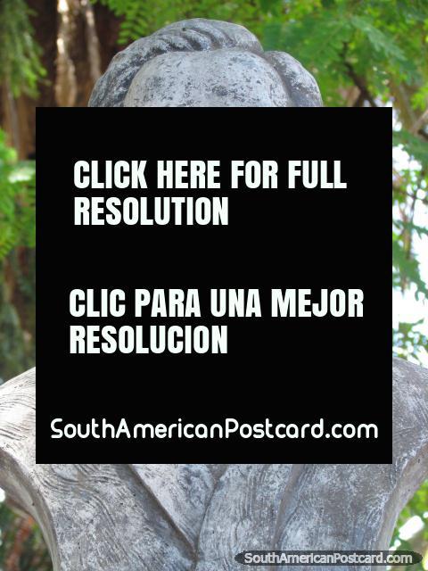 El escritor Argentino Jose Hernandez (1834-1886), monumento en Jujuy. (480x640px). Argentina, Sudamerica.
