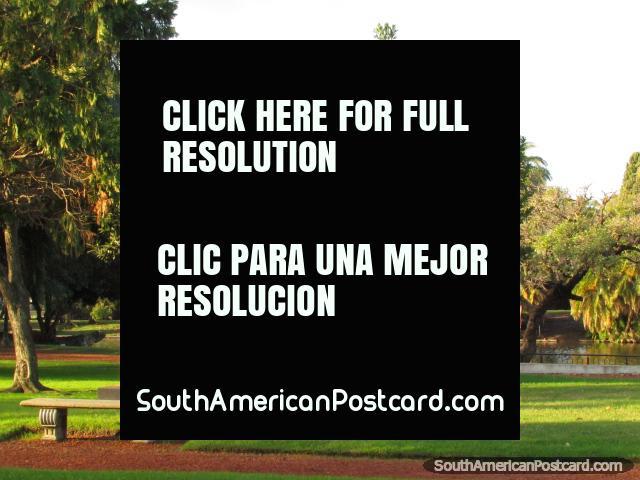 Al lado del lago en el Buenos Aires hermoso Parque Tres de Febrero. (640x480px). Argentina, Sudamerica.