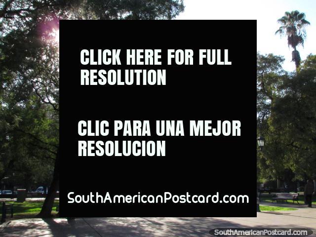 Hay mucho espacio en Plaza Independencia en Mendoza. (640x480px). Argentina, Sudamerica.
