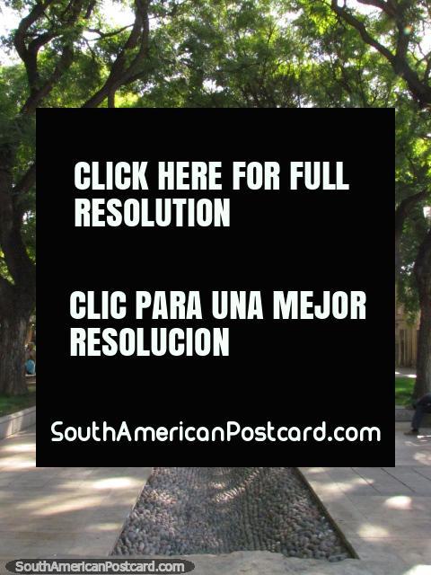 Paseo Alameda, a 7 block public walk created in 1808 in Mendoza. (480x640px). Argentina, South America.