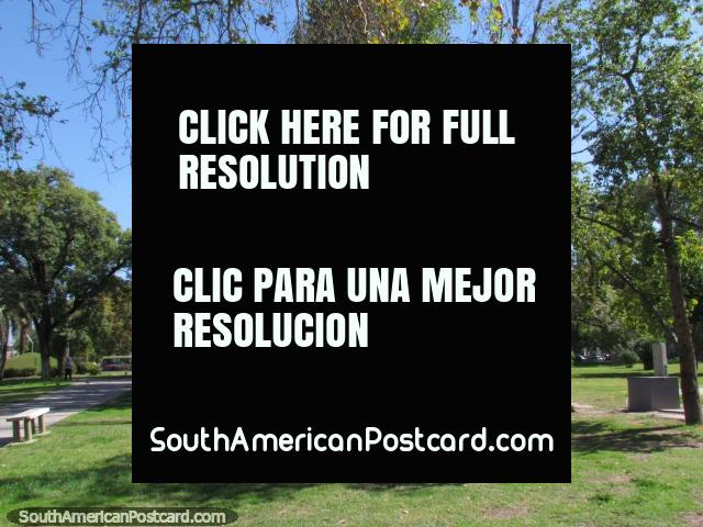 The grassy area and trees of Plaza Espana in San Juan. (640x480px). Argentina, South America.