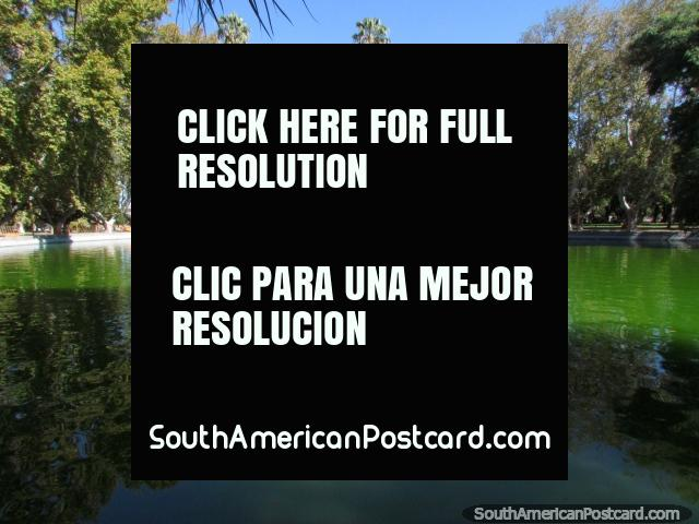 The lagoon and trees around at Parque de Mayo in San Juan. (640x480px). Argentina, South America.