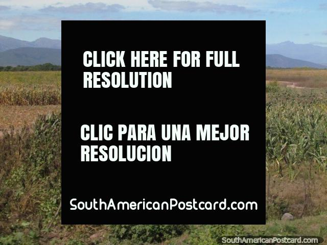 Aquellas montañas se hacen el sur un poco menos distante del El Carril. (640x480px). Argentina, Sudamerica.