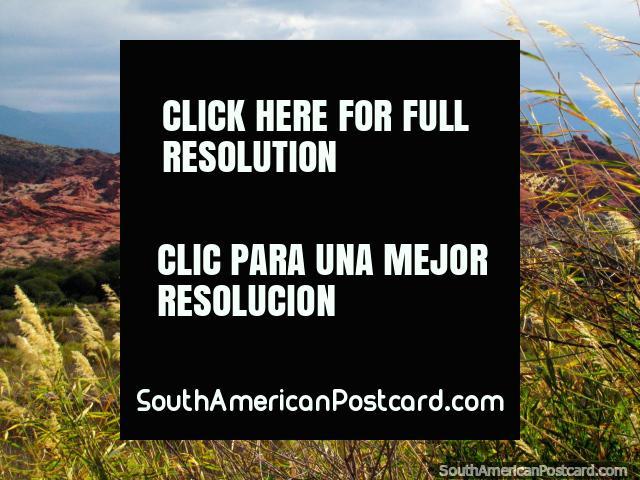 Grasslands and mountains around the 3 Castles at the Quebrada de las Conchas in Cafayate. (640x480px). Argentina, South America.