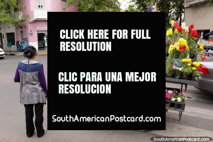 Uma mulher com um bonde de flores brilhantes em uma esquina de rua em Salta. (720x480px). Argentina, América do Sul.