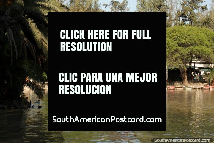 Hire a boat and paddle around the lagoon at Parque San Martin in Salta. (720x480px). Argentina, South America.