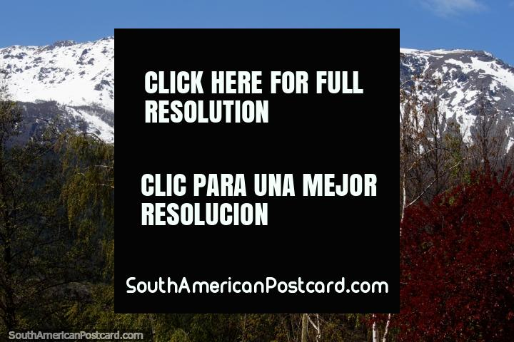 Stunning views of the mountain ranges that stand beside the town of El Bolson and beautiful tall trees. (720x480px). Argentina, South America.