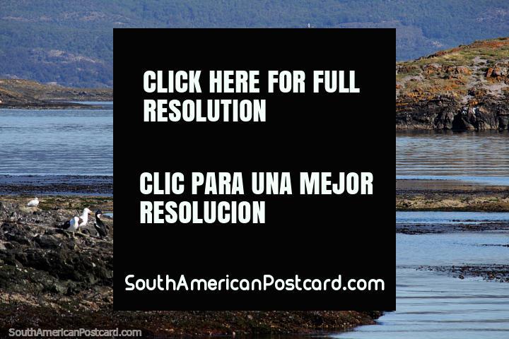 Faro rojo y blanco y una escena hermosa en el puerto de Ushuaia. (720x480px). Argentina, Sudamerica.