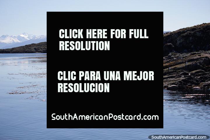 Islas del Canal de Beagle y montañas nevadas distantes en Ushuaia. (720x480px). Argentina, Sudamerica.