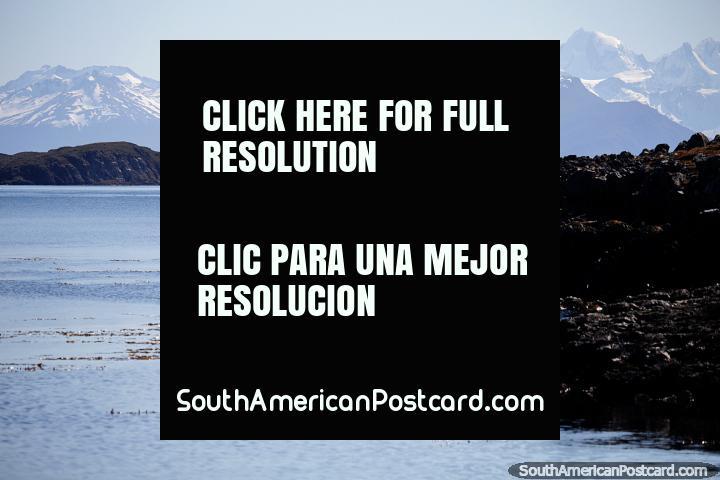El puerto en el extremo del mundo en el extremo sur de Ushuaia. (720x480px). Argentina, Sudamerica.