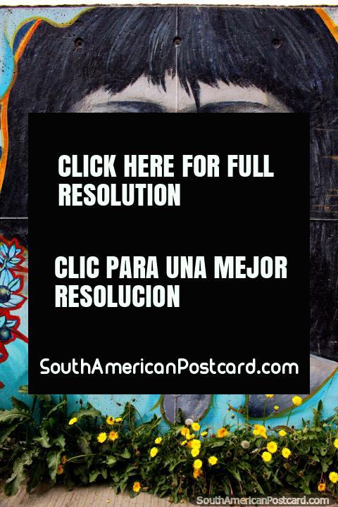 Cara de los indígenas de la Tierra del Fuego, arte callejero en Ushuaia. (480x720px). Argentina, Sudamerica.