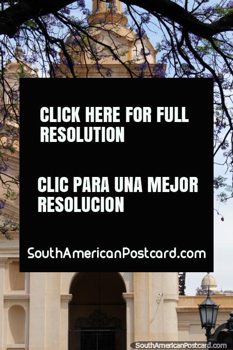 A nossa Senhora da Suposição, catedral de Córdoba, a torre no lado direito. (480x720px). Argentina, América do Sul.