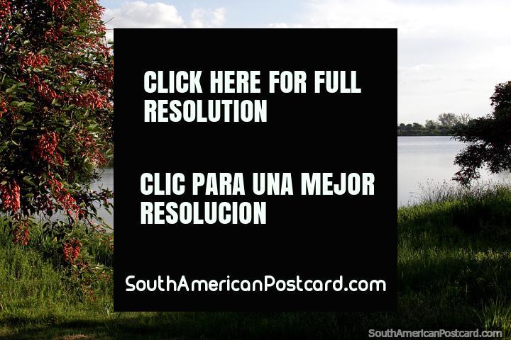 Hermoso y tranquilo en el Río Santa Fe al lado de la ciudad de Santa Fe. (720x480px). Argentina, Sudamerica.