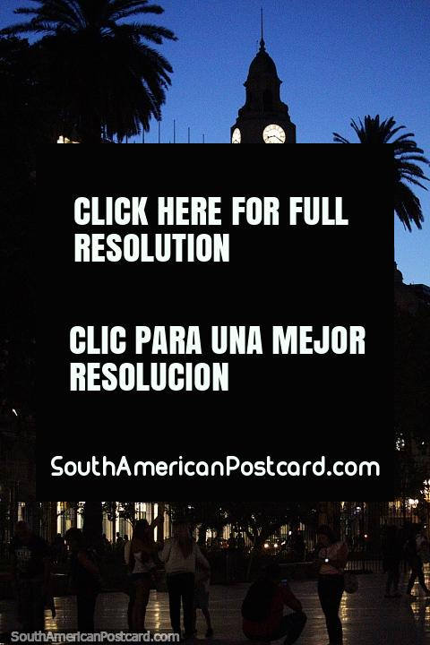 Plaza de Mayo en Buenos Aires at night with tall clock tower and palm tree. (480x720px). Argentina, South America.