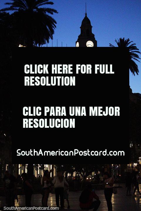 Praça de Mayo en Buenos Aires a noite com alta torre de relógio e palmeira. (480x720px). Argentina, América do Sul.