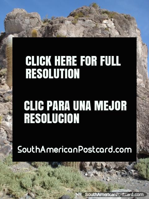 Cactus and rock on Cactus Mountain in the Salar de Uyuni. (480x640px). Bolivia, South America.