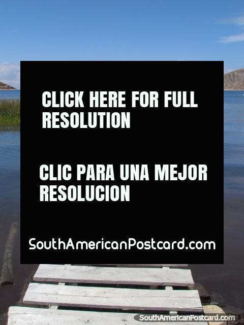 Broken jetty and lake reeds at Isla del Sol, Lake Titicaca. (480x640px). Bolivia, South America.
