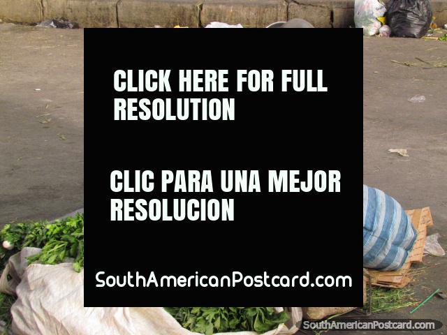 Woman sells spinach in La Paz markets and chews coca. (640x480px). Bolivia, South America.