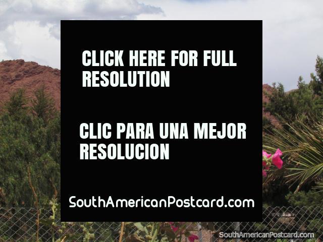 Iglesia, flores rosadas y rocas rojas en Tupiza. (640x480px). Bolivia, Sudamerica.