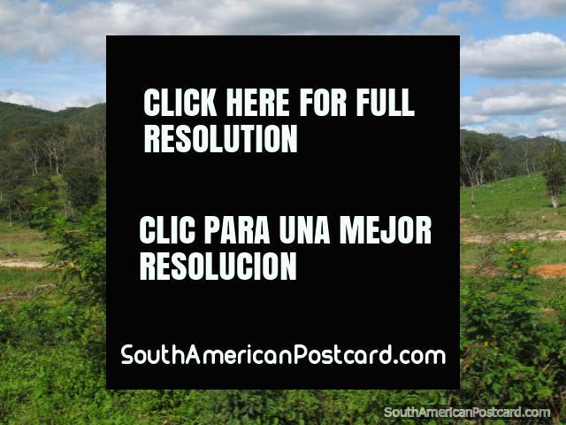 Foresty colinas verdes e terreno em volta de Abapo. (640x480px). Bolívia, América do Sul.