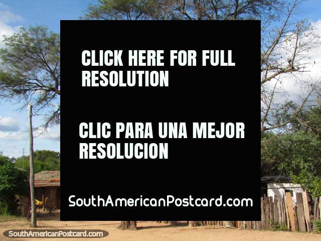 Cerca hecha de troncos de madera, 2 grandes árboles y casas de campo al sur de Santa Cruz. (640x480px). Bolivia, Sudamerica.