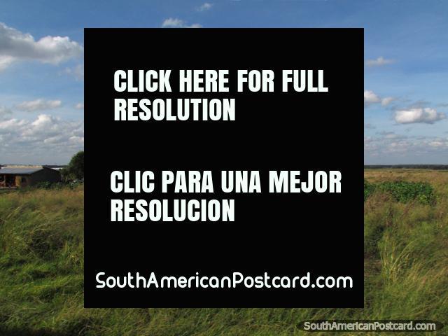 Amazing beautiful open countryside south of Santa Cruz. (640x480px). Bolivia, South America.