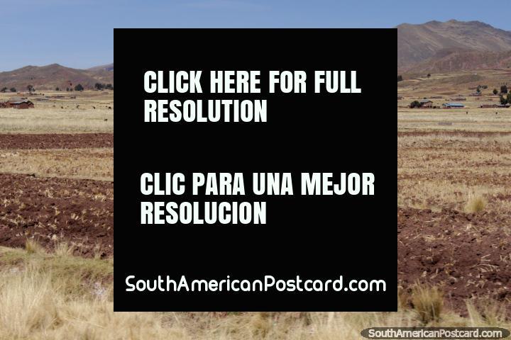 Pastagens e colinas na bela zona rural perto de Tiwanaku. (720x480px). Bolívia, América do Sul.