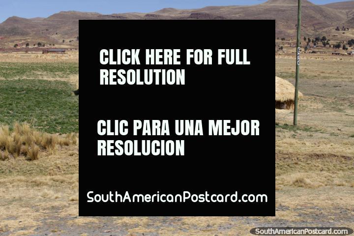 Una casa de adobe con algunas zonas verdes a su alrededor, cerca de Tiahuanaco. (720x480px). Bolivia, Sudamerica.
