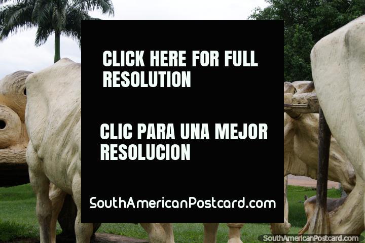Hombre con sus vacas arando, monumento en Cobija. (720x480px). Bolivia, Sudamerica.
