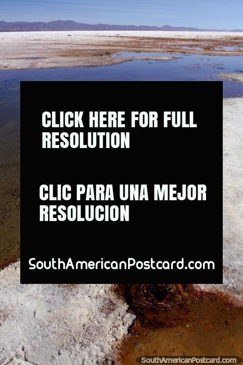 As bolhas de buraco marrons com a água no sal atenuam em Uyuni, chamam-no os olhos do deserto. (480x720px). Bolívia, América do Sul.