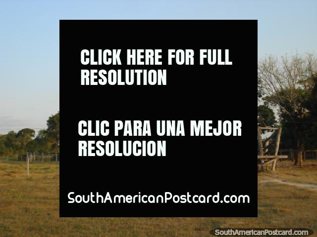 Santa Clara farm arrival point in the Pantanal. (640x480px). Brazil, South America.