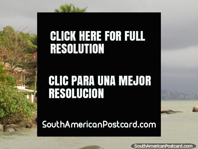 Seixos rolados pitorescos e palmeiras, um quintal bonito para ter, Florianopolis. (640x480px). Brasil, América do Sul.