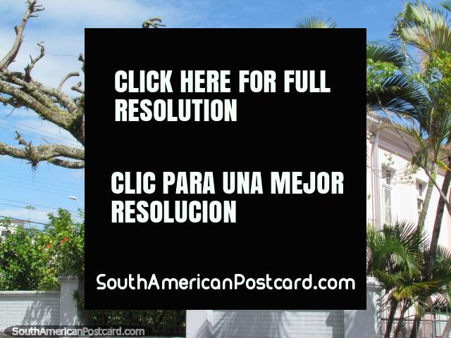 Un edificio histórico rosado y árboles agradables en Florianopolis. (640x480px). Brasil, Sudamerica.