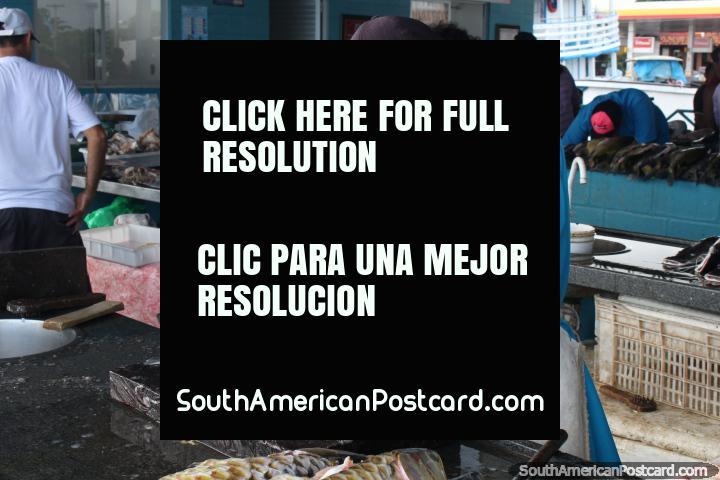 Um homem corta e corta um peixe em filetes no mercado em Santarem. (720x480px). Brasil, América do Sul.