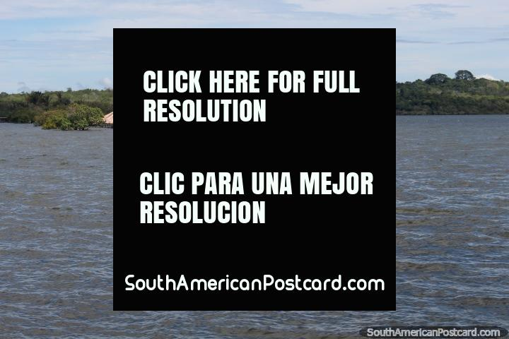 Island of Love (Ilha do Amor), submerged during March, come between Aug-Dec to feel the love, Alter do Chao near Santarem. (720x480px). Brazil, South America.