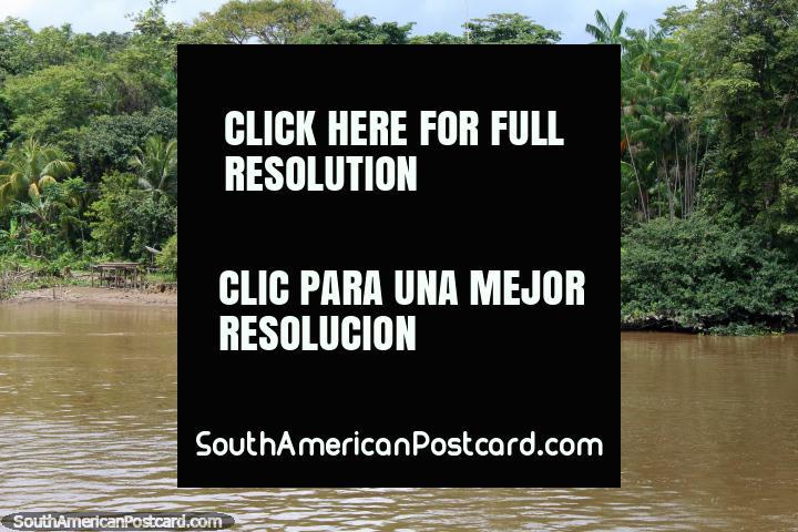 El barco llega a recoger a un hombre de su casa en la selva del Amazonas, al norte de Breves. (720x480px). Brasil, Sudamerica.