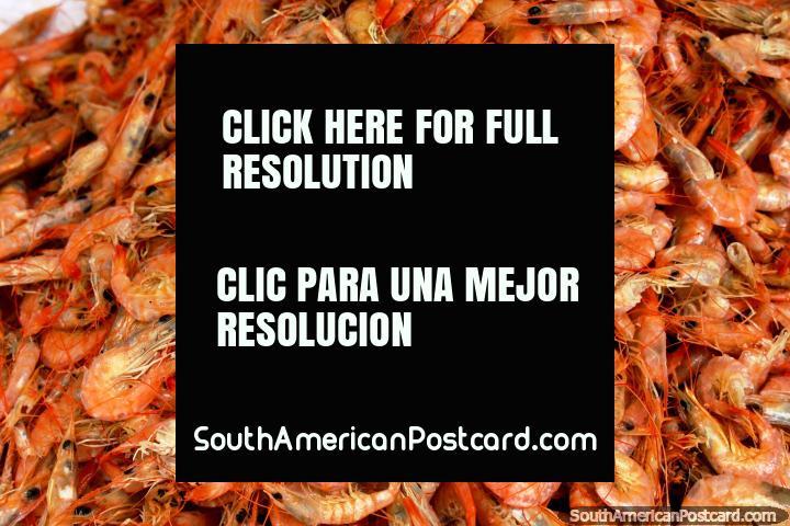 Shrimps for sale at Ver-o-Peso Market in Belem. (720x480px). Brazil, South America.
