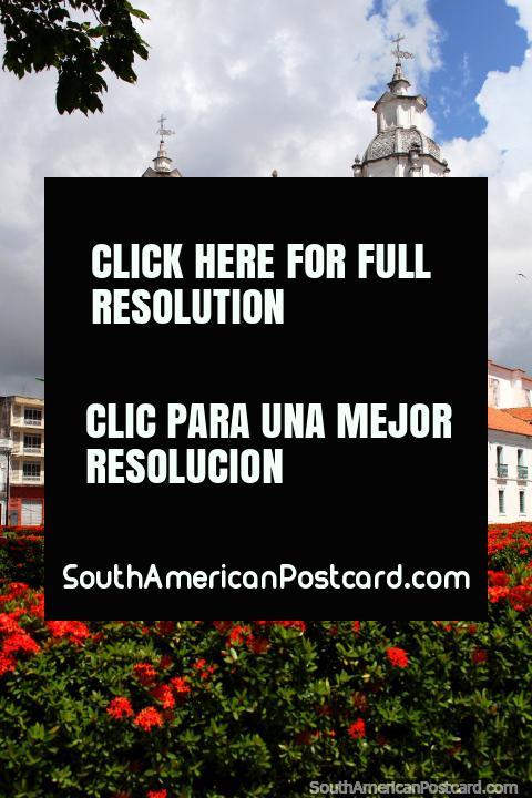 La catedral es una de las grandes atracciones en Belem, así como la plaza de flores de color rojo junto a él. (480x720px). Brasil, Sudamerica.