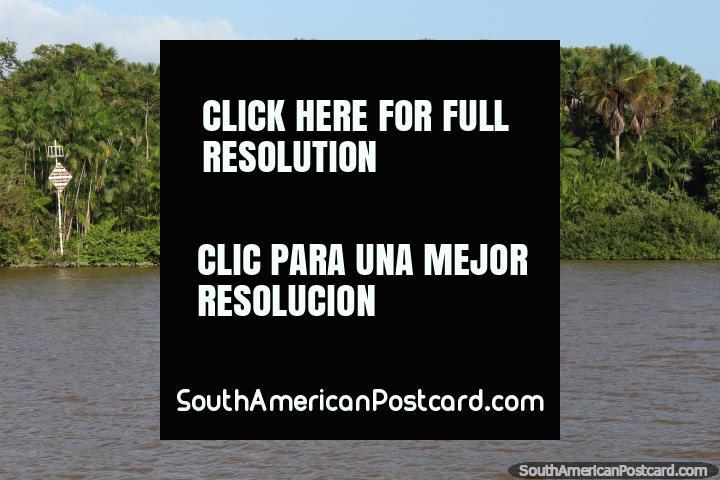 Las casas son empequeñecidas por la selva y el río en el Amazonas, al oeste de Belem. (720x480px). Brasil, Sudamerica.