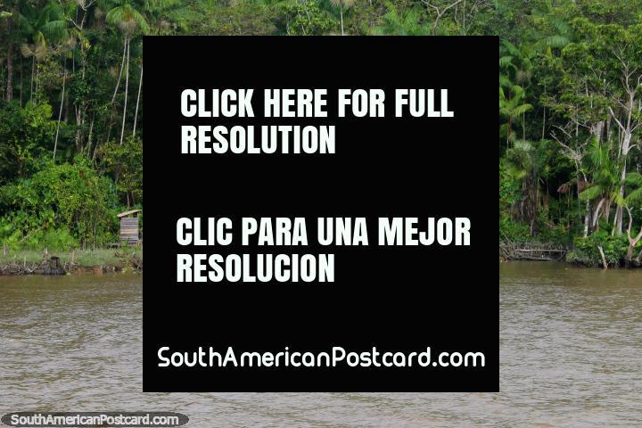Menina em uma canoa, o avô senta-se do lado de fora da sua cabana de madeira no Amazônia, ao sul de Macapa. (720x480px). Brasil, América do Sul.