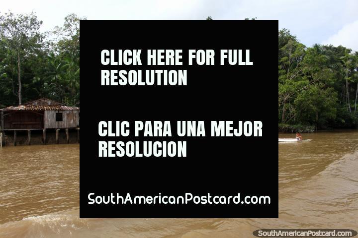 Ferry deja una ola a medida que pasa por una casa de Amazonas, al sur de Macapá. (720x480px). Brasil, Sudamerica.