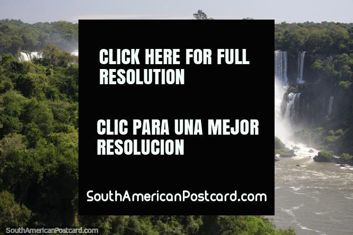 O arbusto verde gordo e as cachoeiras brancas puras, assombrosas com Foz do Iguaçu. (720x480px). Brasil, América do Sul.