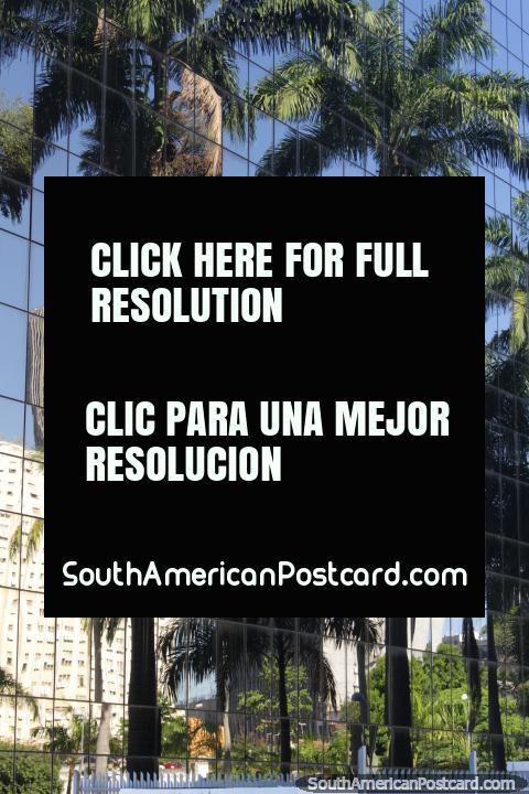 Palmeras reflejan en las ventanas de espejo de un edificio moderno en Río de Janeiro. (480x720px). Brasil, Sudamerica.