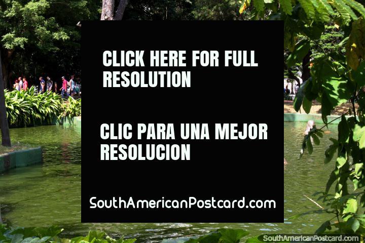 Praca da Republica, pond and fountain at the plaza in the Republica neighborhood in Sao Paulo. (720x480px). Brazil, South America.