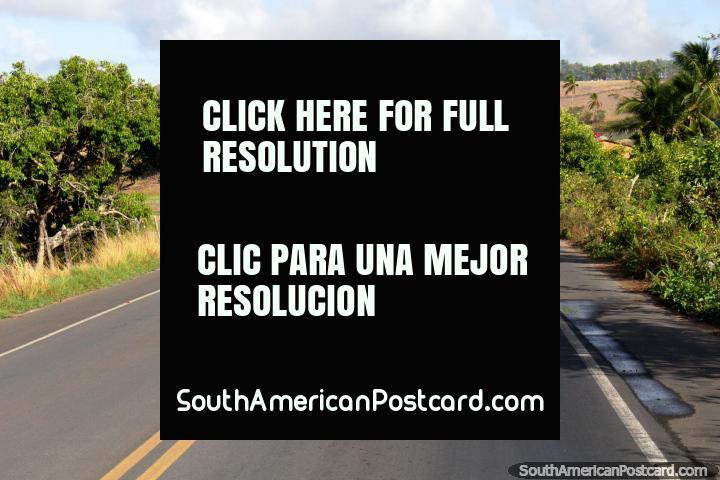 O caminho entre Coruripe e Maceio na costa do norte. (720x480px). Brasil, América do Sul.